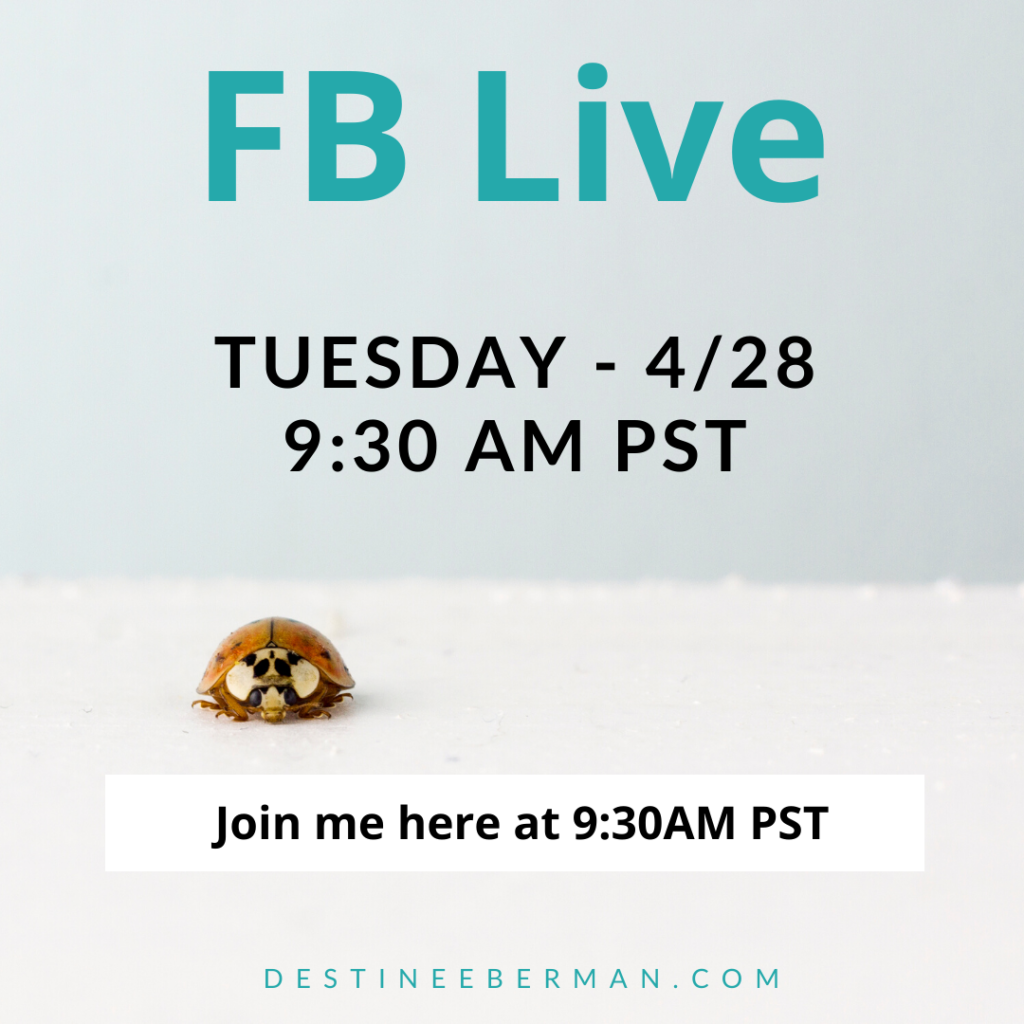 Graphic, announcing FB Live, created on Canva